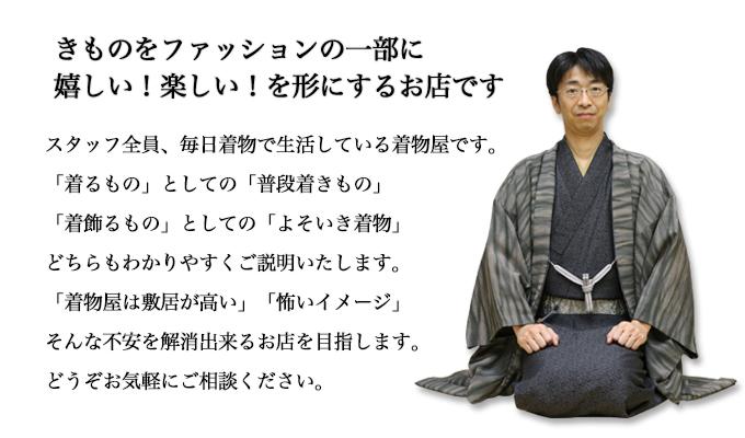 kimonofasyon
